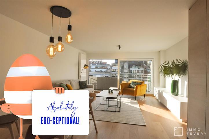 Magnifique appartement rénové, tout près de l'Avenue Lippens et la mer.